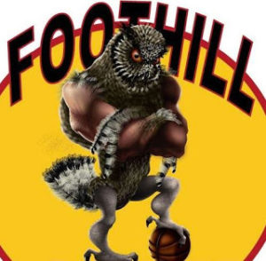 Foothill Owls